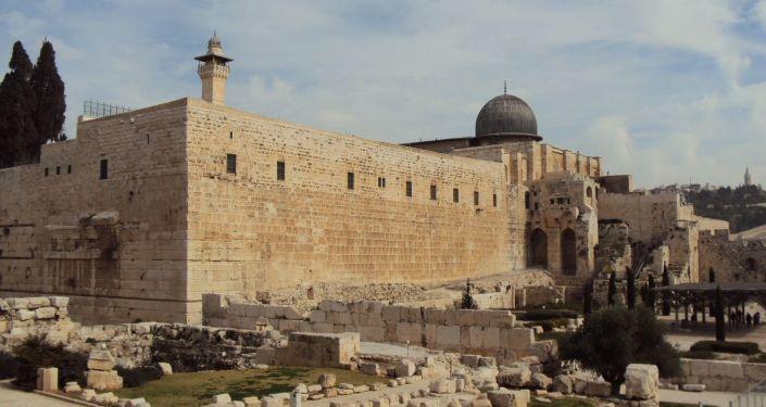 Descobrem em Israel raro selo de ametista entalhado com planta mencionada na Bíblia (FOTOS)