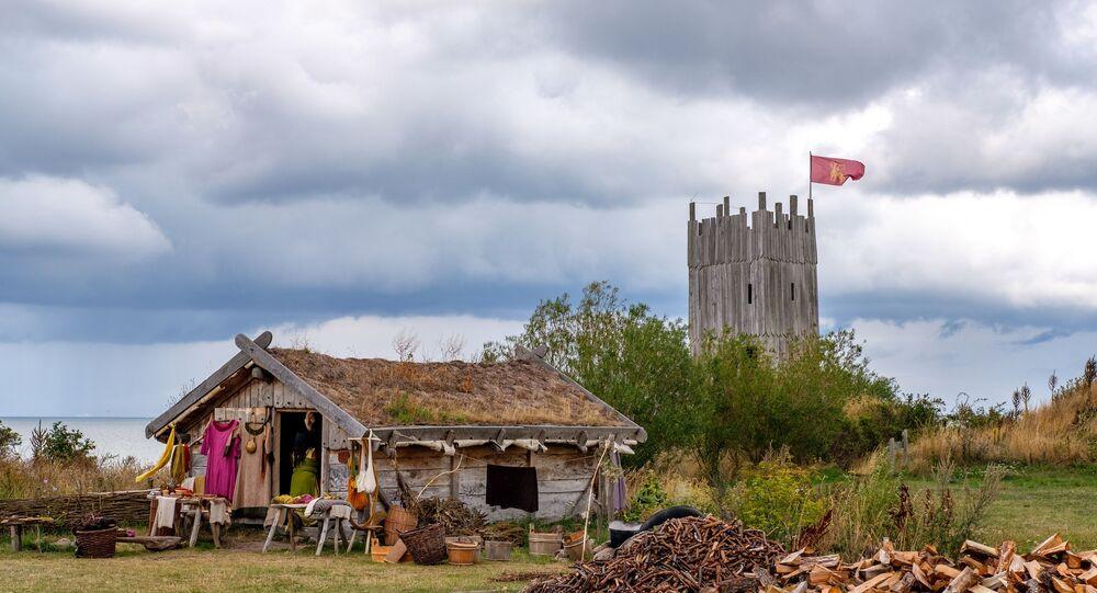 Foto de lar de vikings