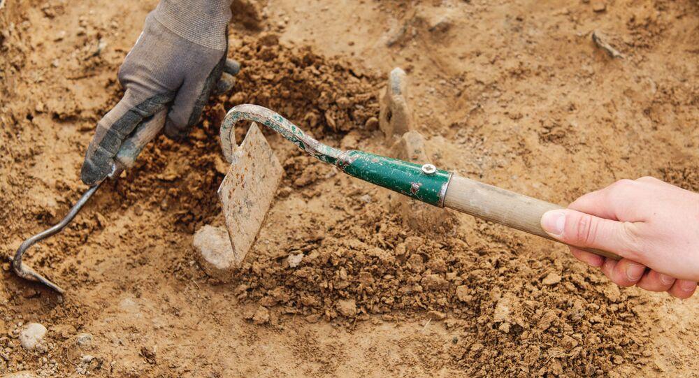 Arqueólogo trabalhando no local com ferramentas