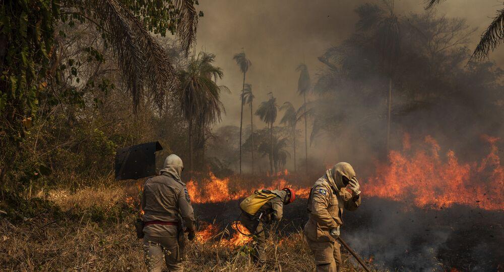 Bombeiros e brigadistas combatem incêndio florestal no Pantanal.