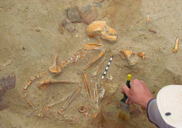 Os macacos de estimação foram encontrados cuidadosamente enterrados em uma necrópole animal e dispostos como crianças dormindo
