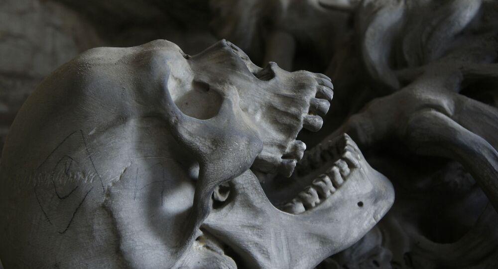 Esqueleto humano (imagem ilustrativa)