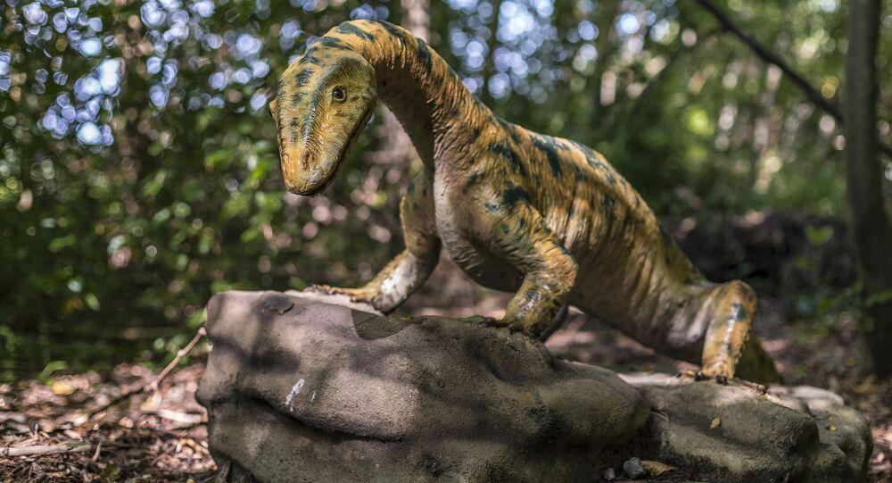 Réptil dinossauro (imagem referencial)