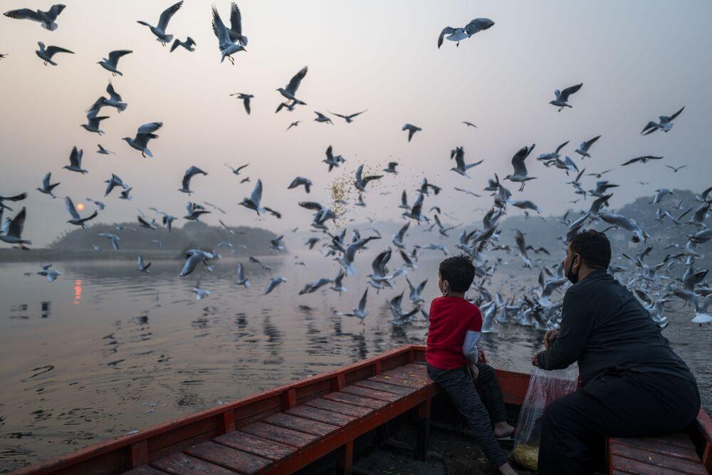 Pai e filho alimentam gaivotas nas margens do rio Yamuna durante manhã com neblina em Nova Deli, Índia
