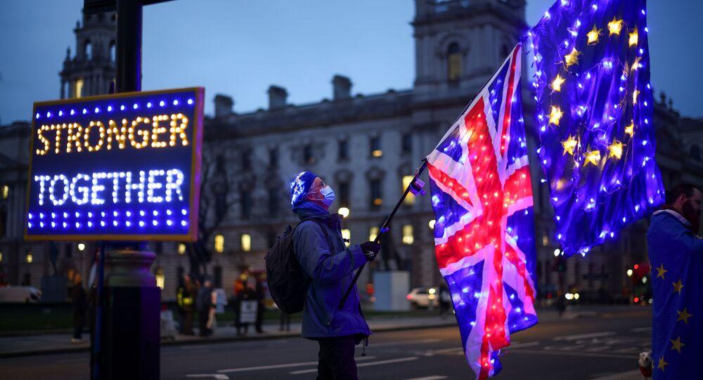 Manifestante contrário ao Brexit segura bandeiras enquanto protesta em frente às Casas do Parlamento em Londres, Reino Unido, 9 de dezembro de 2020