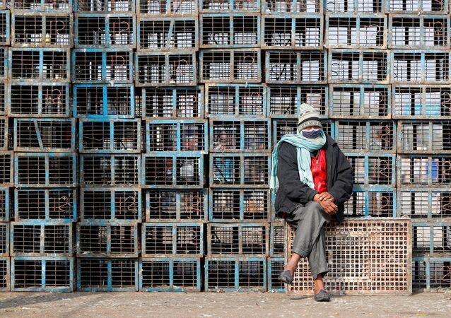 Vendedor usa máscara protetora ao lado de gaiolas de aves em mercado popular em Nova Deli, Índia, 11 de janeiro de 2021
