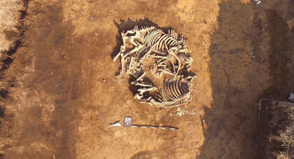 Os arqueólogos Jan Bulas e Marcin M. Przybyla estimam que pode haver mais de uma dúzia de tumbas no cemitério, que fica no município de Debiany, no sudeste da Polônia