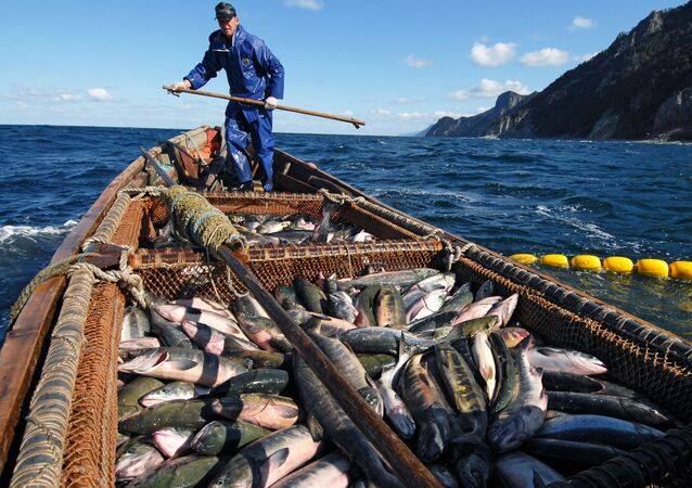 Pescador no mar de Okhotsk