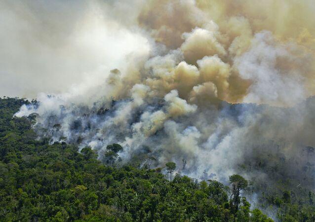 Vista aérea de queimadas na Amazônia, ao sul de Novo Progresso, no estado do Pará, em 16 de agosto de 2020