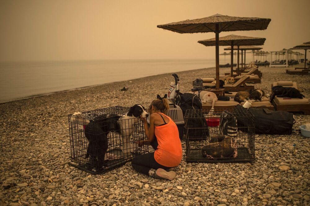 Uma mulher cuida de um cachorro ferido em uma praia na ilha grega de Evia, bastante afetada pelos incêndios florestais, 9 de agosto de 2021