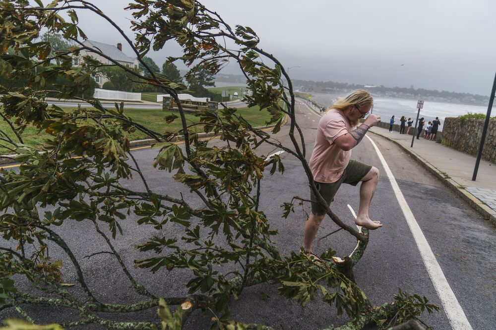 Árvore caída após tempestade tropical Henri, em Newport, Rhode Island, Estados Unidos, 22 de agosto de 2021