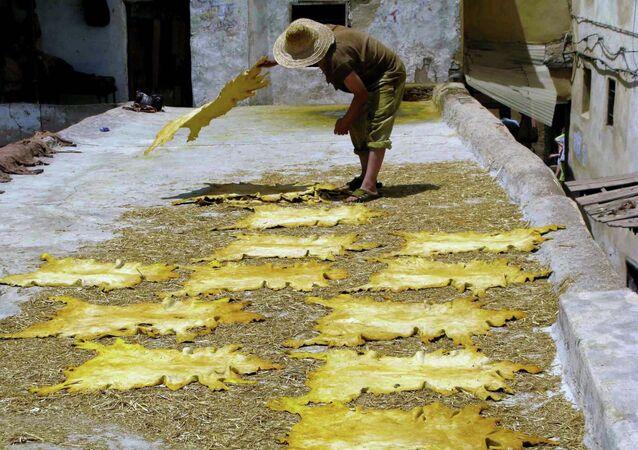 Secagem de couro em uma fábrica no Marrocos