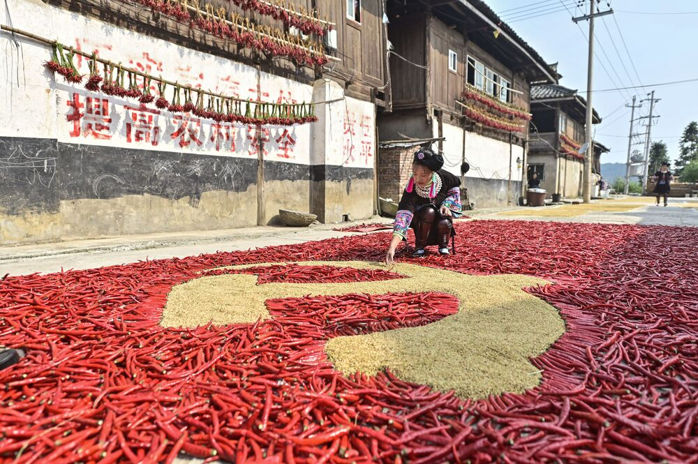 Jovem desenha bandeira do Partido Comunista Chinês (PCC) com milho e pimentão vermelho na província de Guizhou, na China, em 12 de setembro de 2021