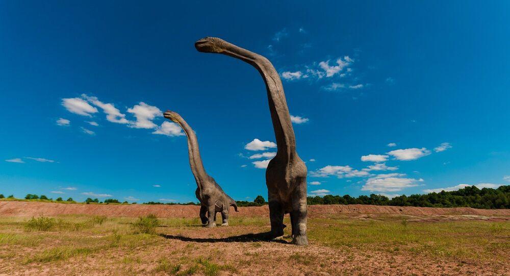 Dinossauro (imagem referencial)