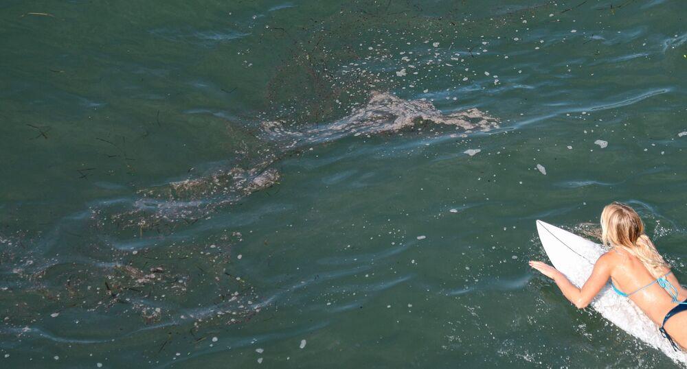 Surfista nada perto de mancha de petróleo em Huntington Beach, no estado norte-americano da Califórnia, em 3 de outubro de 2021