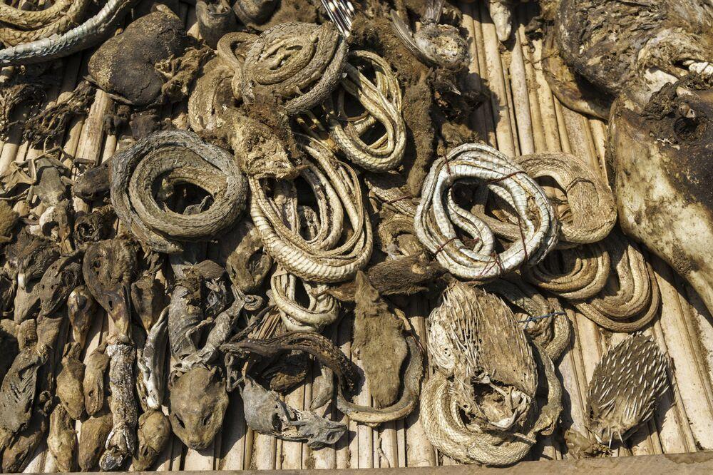 Visitantes contam que animais são dessecados no mercado, enchendo o ar com cheiro de decomposição