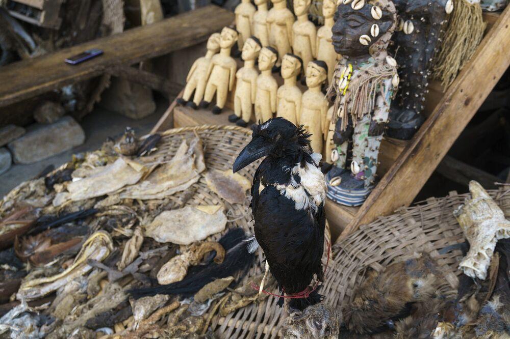 Os cidadãos de Lomé vão ao mercado não apenas para comprar, mas para pedir conselhos a feiticeiros e sacerdotes. Se até mesmo o famoso jogador de futebol belga de origem africana, Romelu Lukaku, pediu conselho aos sacerdotes do Akodessewa antes de prorrogar contrato com seu clube, imagine as pessoas comuns