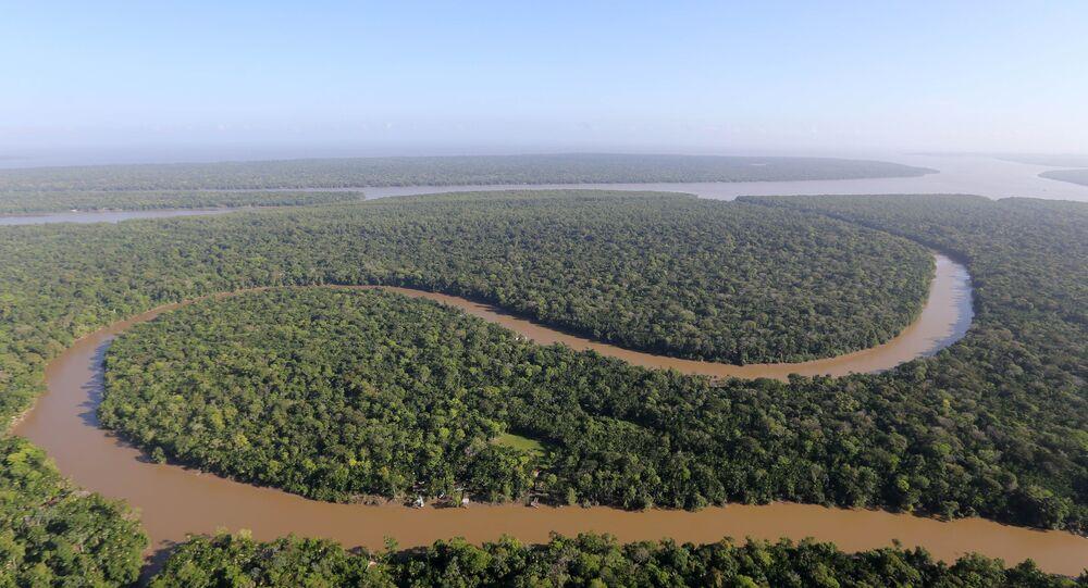 Brasil, Colõmbia e Peru respondem por 83% da área da Bacia Amazônica