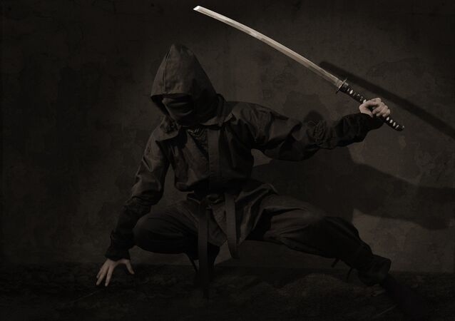 Ninja (imagem referencial)