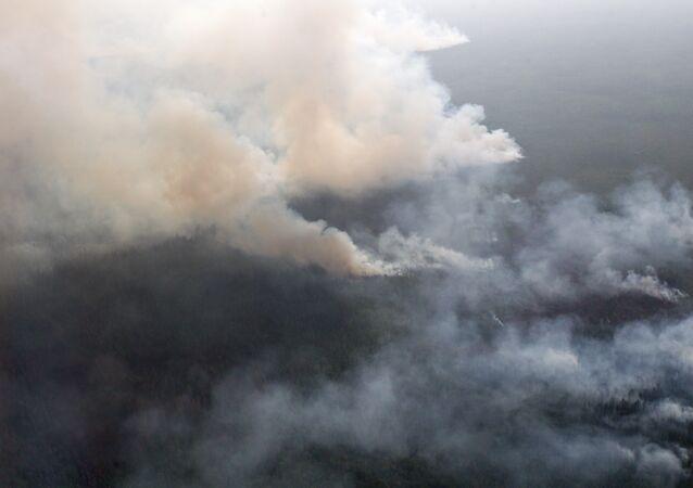 Incêndios florestais na Rússia, 30 de julho de 2012 (foto de arquivo)