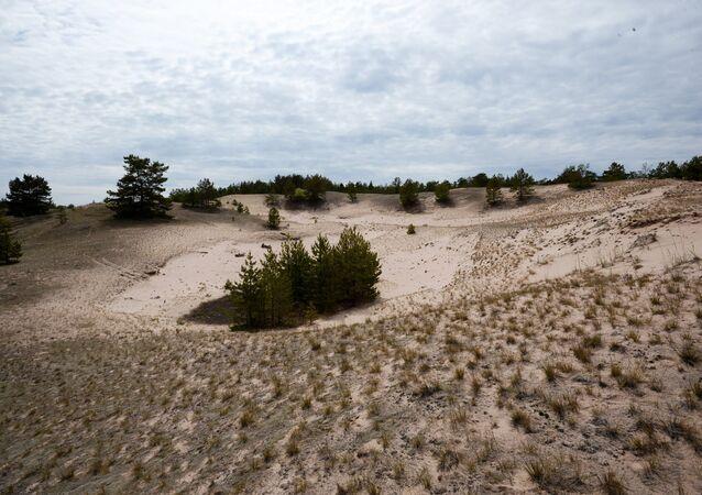 Dunas na ilha de Tyho Bolshoi no Golfo da Finlândia.