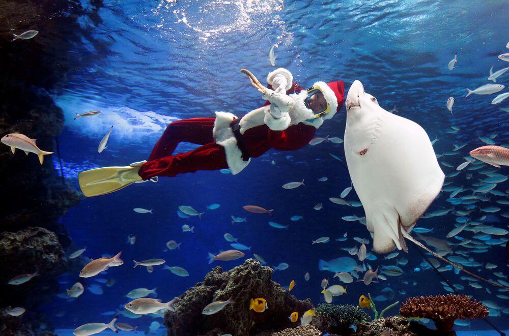 Mergulhador vestido de Papai Noel durante apresentação em aquário em Tokyo, Japão, 18 de dezembro de 2018