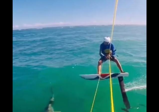 Momento arrepiante em que kitesurfista 'atropela' tubarão