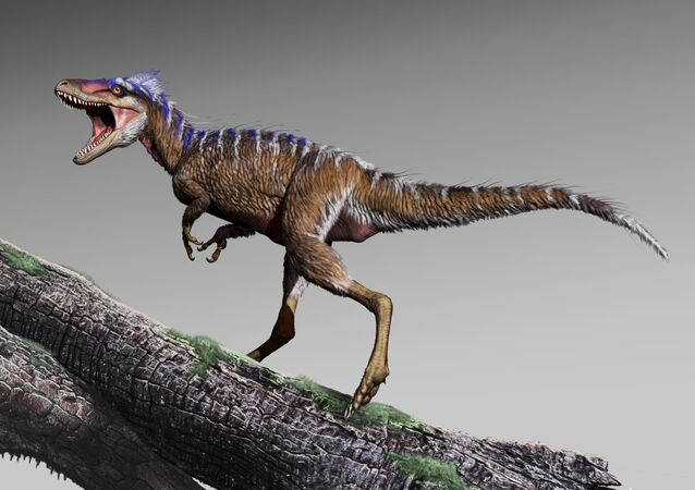 Moros intrepidus, o tiranossauro mais pequeno do Novo Mundo, ilustrado por um artista