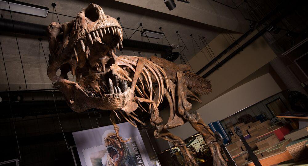 Tiranossauro Scotty encontrado em 1991 no Canadá