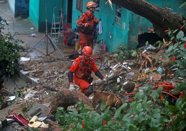 Equipe de resgate com cães em área de deslizamento de terra no Rio de Janeiro (foto de arquivo)