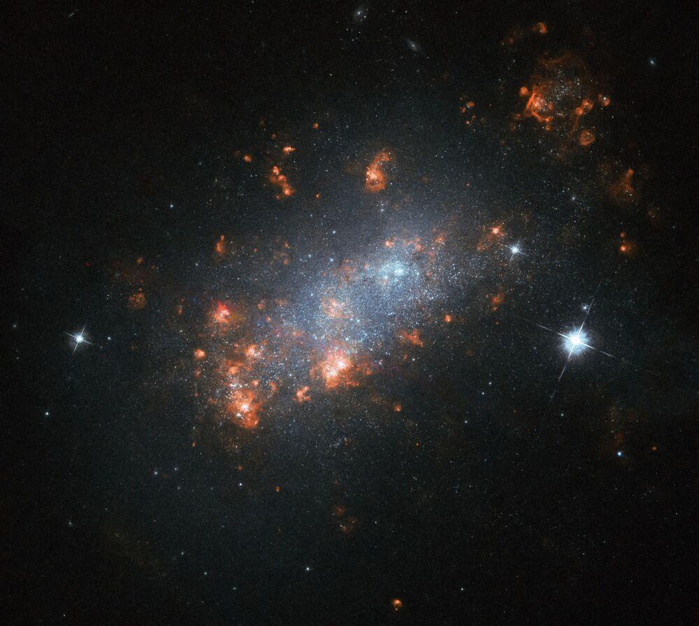 Galáxia NGC 1156 na constelação de Áries
