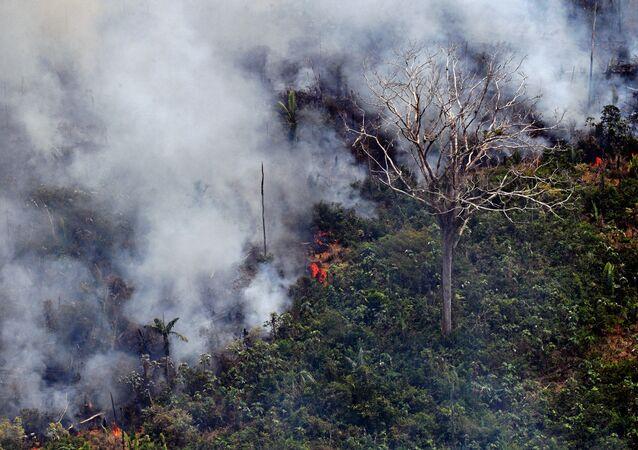 Imagem de queimada na Amazônia, no município Porto Velho, Rondônia