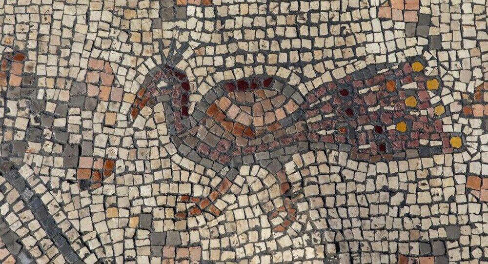 Mosaico descoberto pelo grupo de arqueólogos do Instituto Zinman