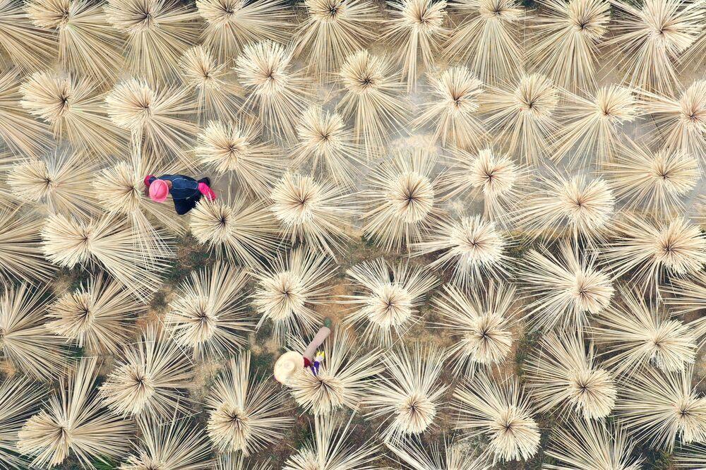Habitantes do campo entre bambu seco