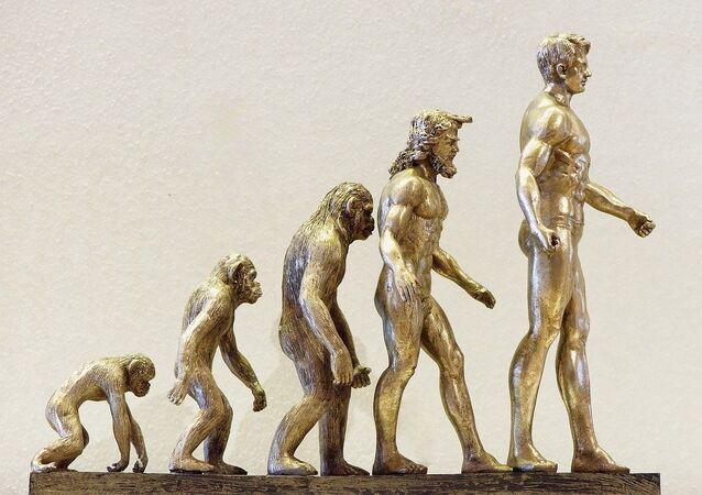 Evolução da espécie humana