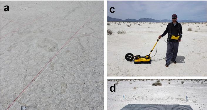 Pegadas de 12.000 anos são descobertas