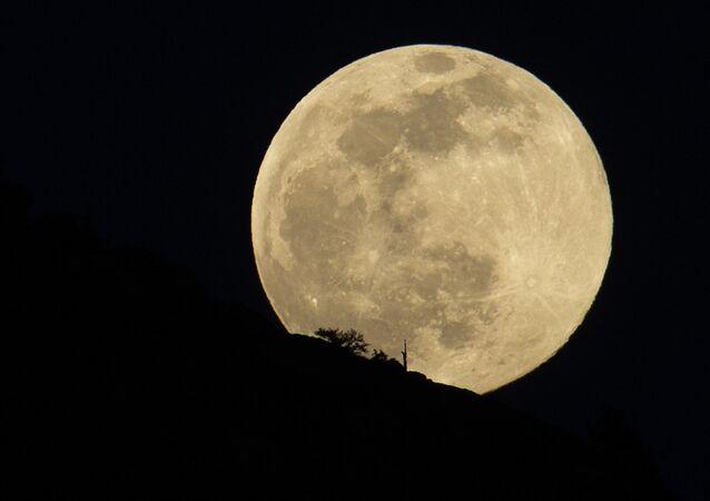 Lua cheia (imagem de arquivo)