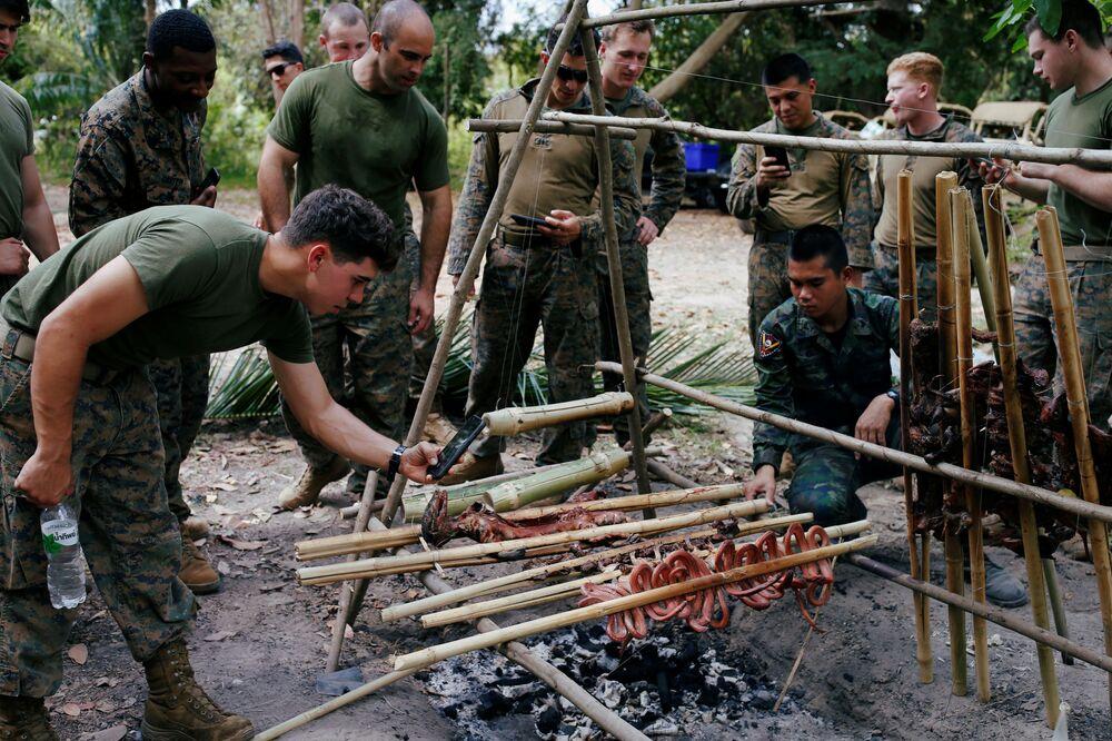 Soldados preparam animais selvagens durante exercício militar Cobra Gold