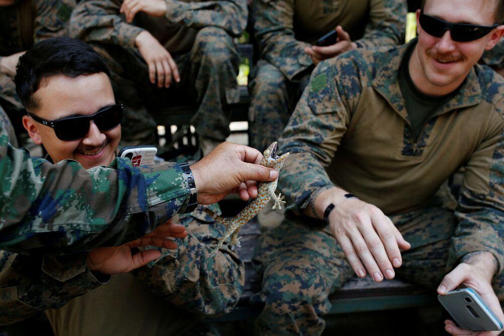 Na Tailândia, instrutor demonstra lagarto para soldados dos Estados Unidos