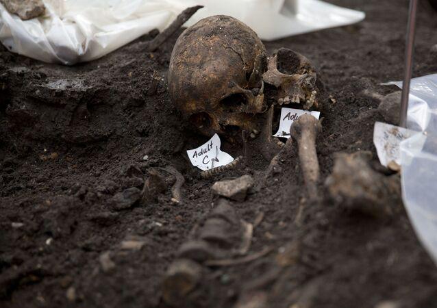 Dois crânios em sítio arqueológico (imagem referencial)