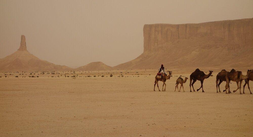 Caravana de camelos no deserto da Arábia Saudita (imagem ilustrativa)