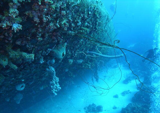 Imagem de naufrágio de navio