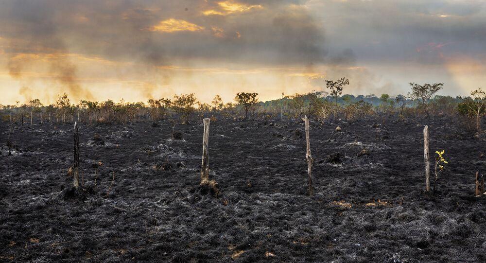 Área de pasto queimado as margens da BR-319 próximo a Humaitá, no Amazonas