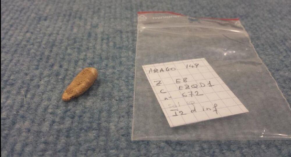 Dente de 560 mil anos encontrado na caverna de Arago