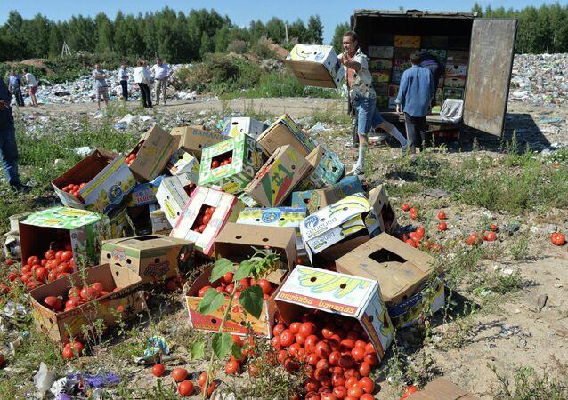 Tomates proibidos de entrar na Rússia destruídos na fronteira com a Bielorrússia, na região da cidade de Smolensk (arquivo)