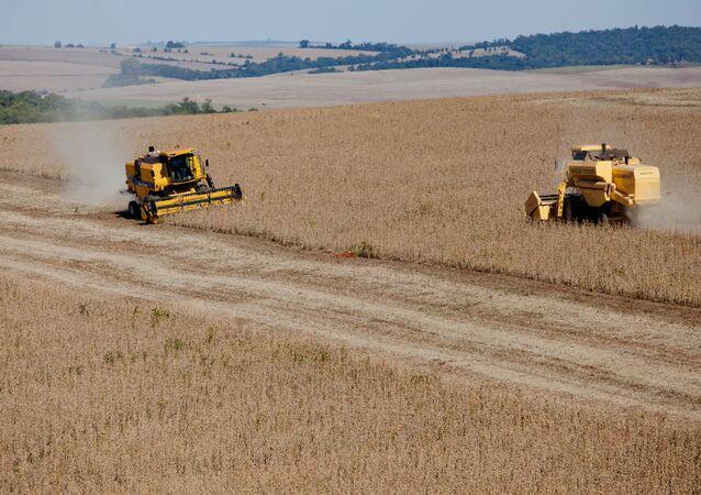 Colheita de soja no Brasil, um dos principais produtos exportados pelo país (imagem referencial)