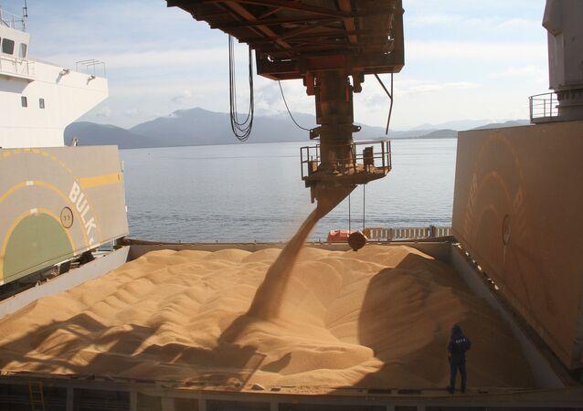 Conab espera crescimento de 11,7% na produção de soja, carro-chefe das exportações brasileiras, que deve alcançar 96,2 milhões de toneladas