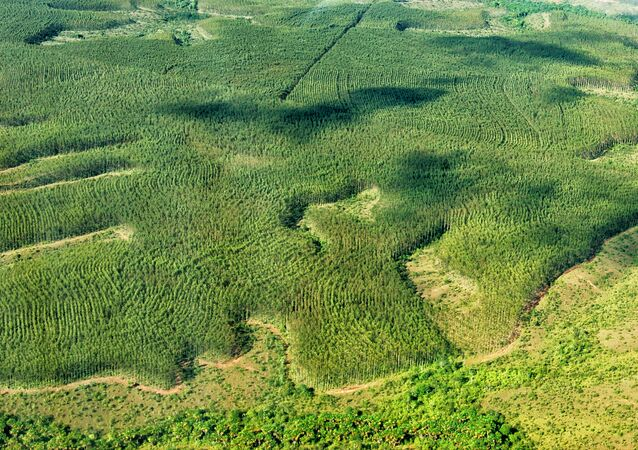 Brasil bateu a meta do Protocolo de Montreal, assinado por 197 nações para a proteção da camada de ozônio