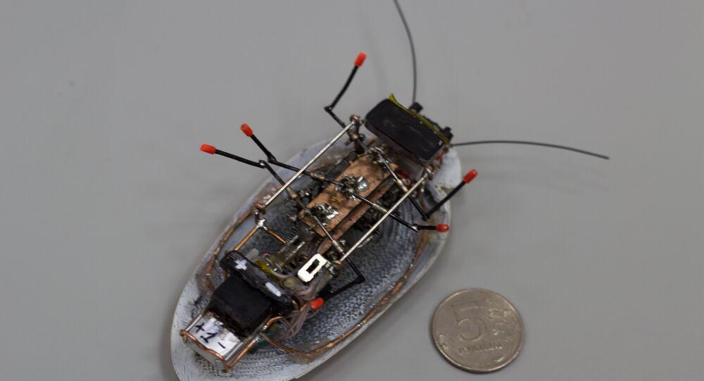 Barata-robô