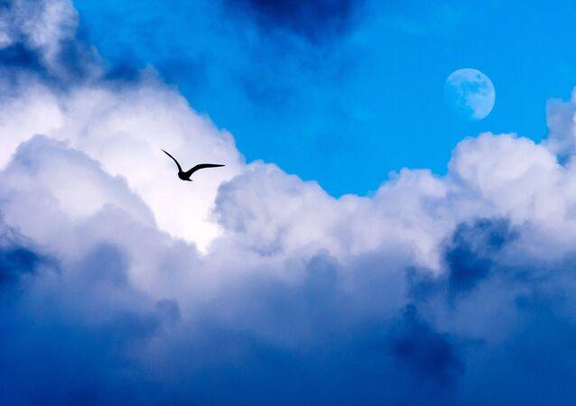 Lua vista no céu em uma tarde de Sevastopol (imagem referencial)